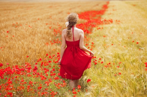 woman-walking-red-meadow-red-flowers-26374541